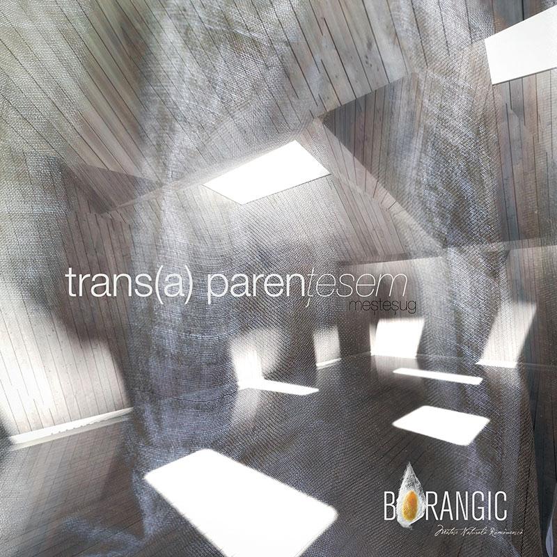 Afis_Trans_a_parentesem