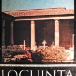 Locuința în timp și spațiu (București: Editura Tehnică, 1975). Coperta. Sursa: colecția personală