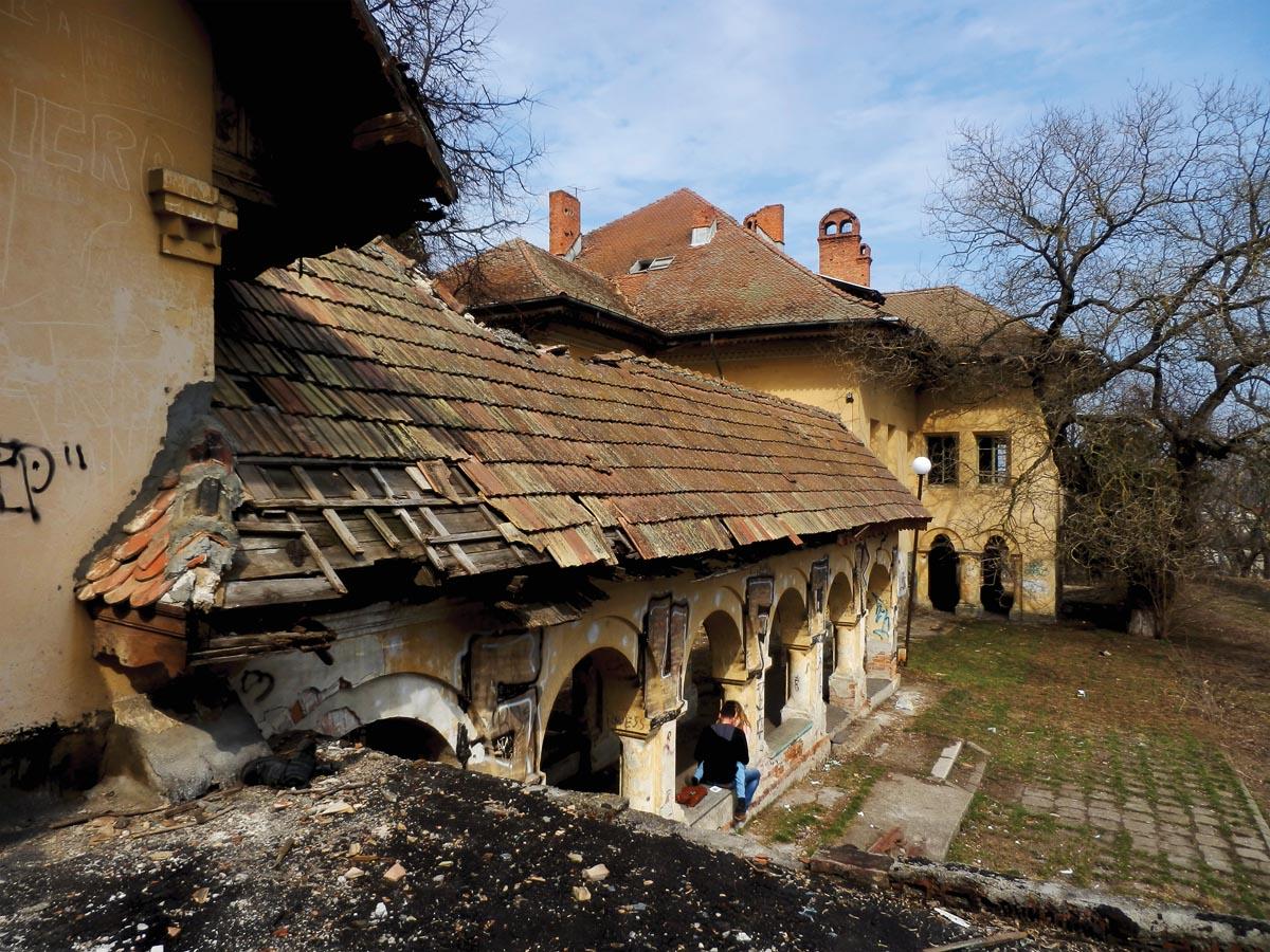 Palatul familiei Cantacuzino-Paşcanu, Pașcani, județul Iași (2013)