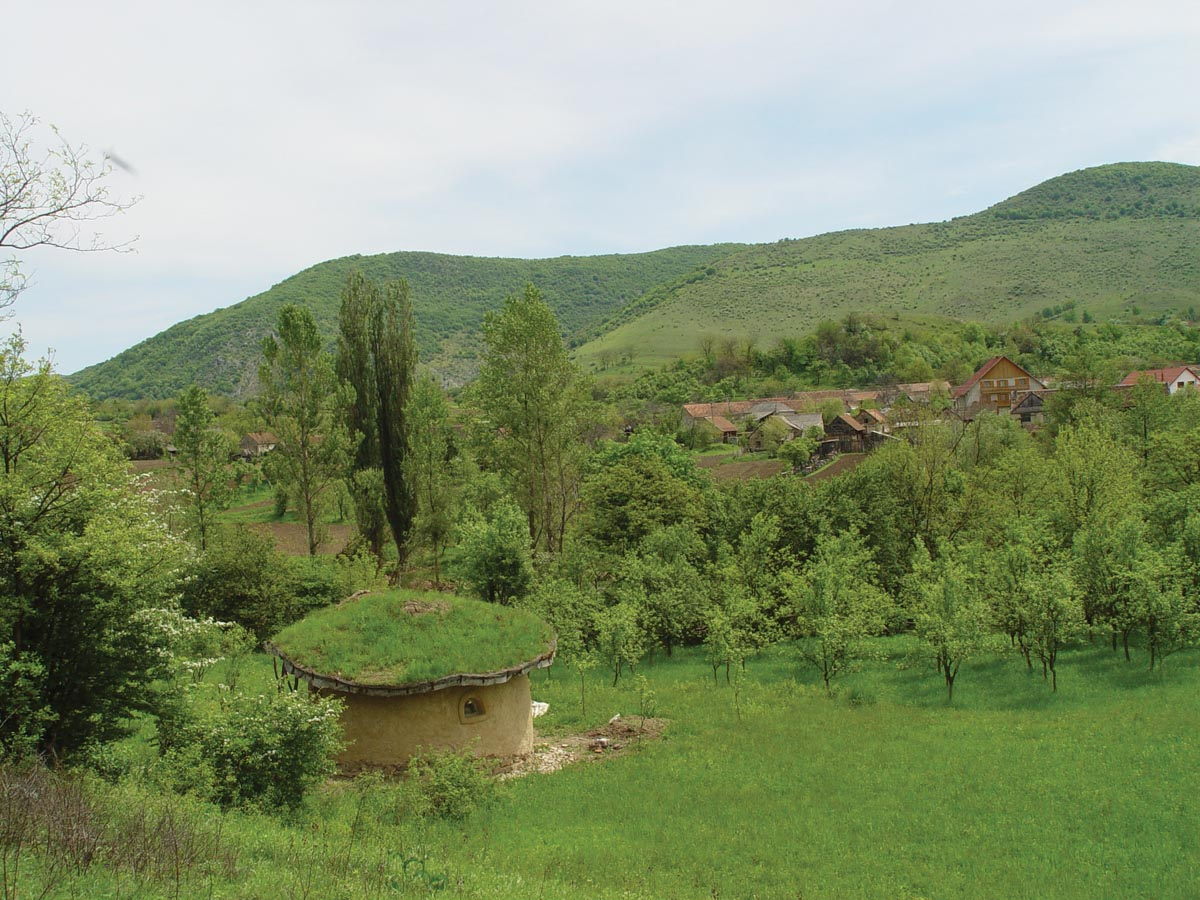 Casa verde, acoperiș verde