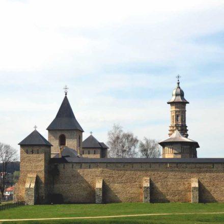 Mănăstirea Dragomirna, ansamblu