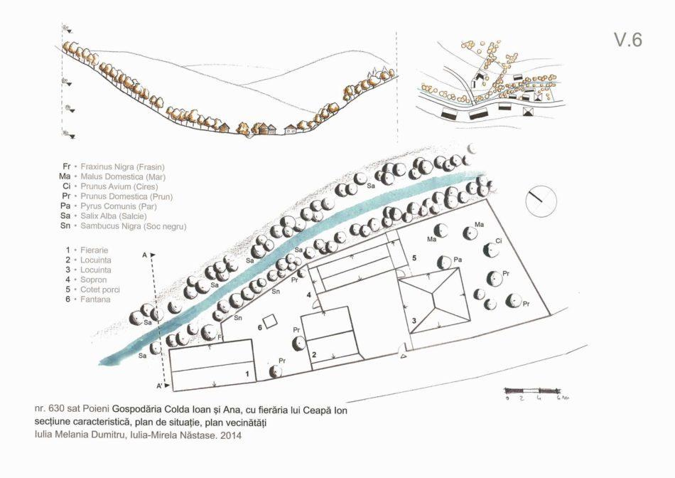 V.6_Fieraria_casa COLDA Ioan_Poieni 630_plan situatie