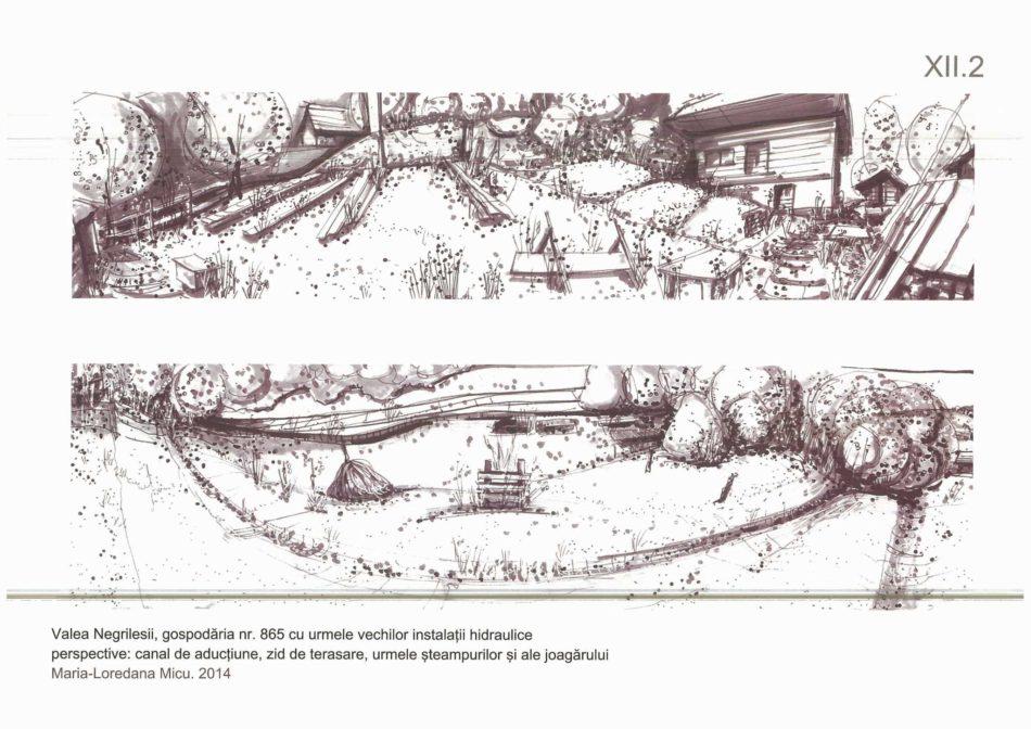 XII.2_Valea Negrilesii_gosp. 965 hidraulice