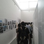 Pavilionul Braziliei, Brazil: Modernity as Tradition, comisar: Luis Terepins © Alexandru Crișan