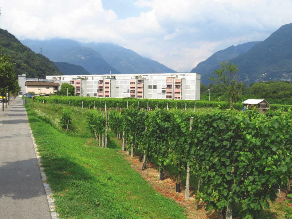 Complexul de locuinţe Verdemonte, Monte Carasso, 1974