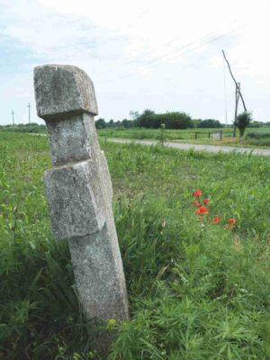 Fig. 2 Cruce de secol XIX, Ştefăneşti, jud Călăraşi, pe drumul spre Arţari. Aflată printre puţinele încă nedislocate, această cruce, prin ridicarea ei la margine şi la răscruce de drumuri, stă mărturie despre cum îşi amprentau oamenii locurile