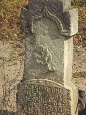 Fig. 24 detaliu de cruce secol XIX, cimitirul parohial Ştefăneşti, Călăraşi. Simbolul regăsit pe acest monument - o ramură din Pomul vieţii sau Floarea vieţii poate fi de influenţă iudaică, fiind frecvent întâlnit şi pe pietrele funerare din cimitirele evreieşti din Bucovina.