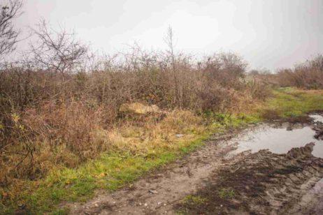 Fig. 8 Localizarea actuală a crucii sparte din Fig. 3, la marginea satului, Odaia, Călăraşi.